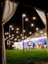 Festoon Lighting Effect (1)