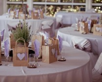 sunshine-coast-wedding-hire-ideas